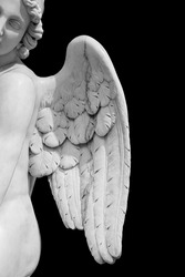 Angel wings isolated on black background with copyspace. Statue of cherub wing close-up