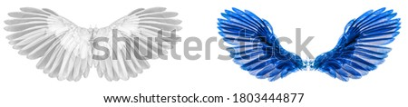 Angel wings isolated on white background  Foto stock ©