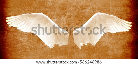 angel wings on grunge texture...