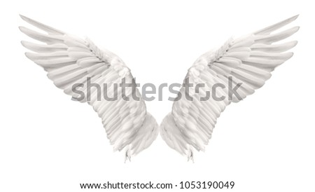 Photo of Angel wings swan are flying isolated on white background. This has clipping path.