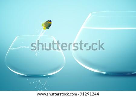 Angelfish jumping into bigger fishbowl.
