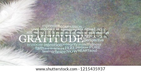 Angelic GRATITUDE Word Cloud Rustic Banner  - two white feathers with a GRATITUDE word cloud between against a dark stone effect multicoloured rustic grunge background