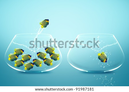 Photo of Angle fish jumping to Big bowl, Good Concept for new life, Big Opportunity, Ambition and challenge concept.