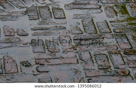 Angled close up of brick walkway wet from afternoon rainfall. Center plain of focus due to angle of camera.