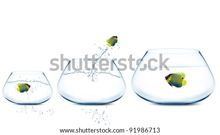Anglefish jumping to Big bowl, Good Concept for new life, Big Opprtunity, Ambition and challenge concept.