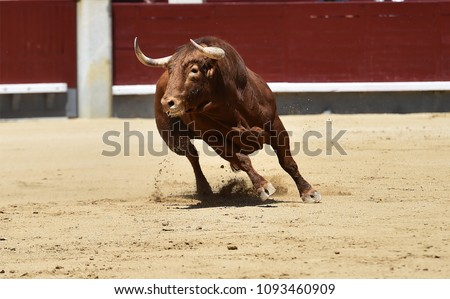 Angry bull red in spain #1093460909