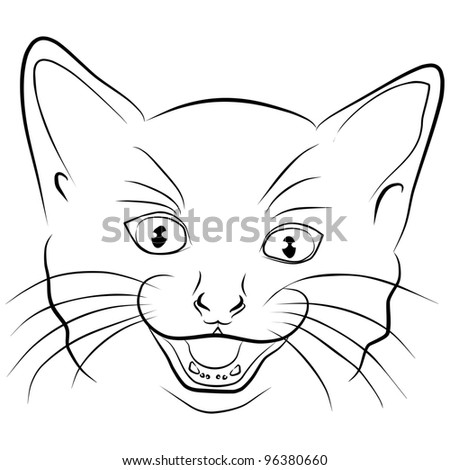 angry cat - head on a white background