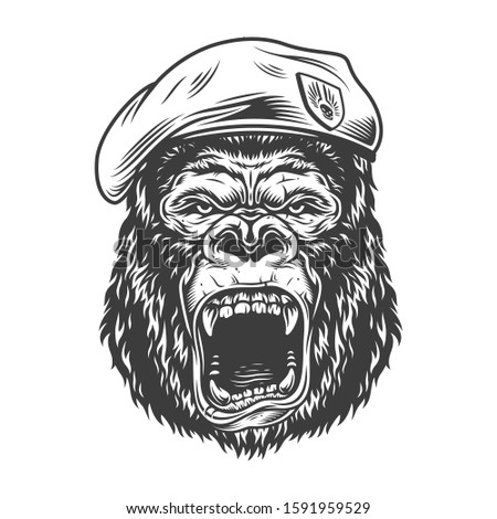 Angry gorilla in monochrome style in beret.  illustration