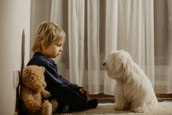 Angry little toddler child, blond boy, sitting in corner with teddy bear and his dog friend, punished for mischief