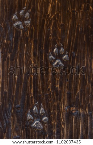 Animal footprint on the wooden surface. #1102037435