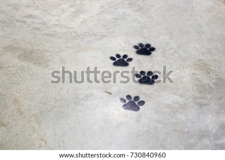 Animal Footprints #730840960