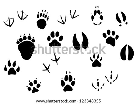 Animal footprints and tracks isolated on white for wildlife concept design, such a logo template. Vector version also available in gallery