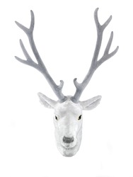 animal friendly hunting trophy, white deer head mounted on the wall, isolated on white