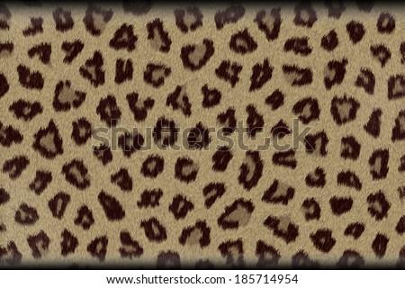 Animal Fur #185714954