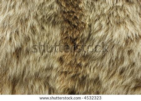 Animal Fur Hair Hide Background Grunge Texture Series 06