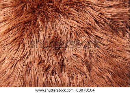 Animal Fur - Long Haired Stock Photo 83870104 : Shutterstock: www.shutterstock.com/pic-83870104/stock-photo-animal-fur-long...