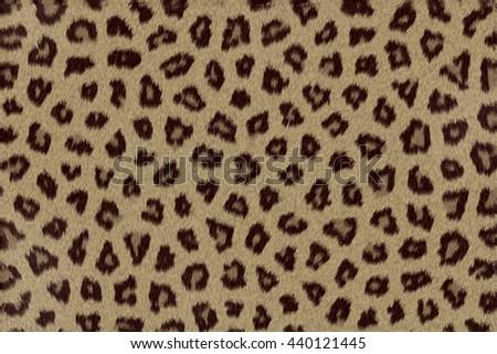 Animal fur or skin close-up. #440121445