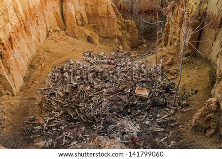 Animal graves near the lake.