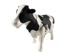 Animal plastic cow toy isolated on white background.