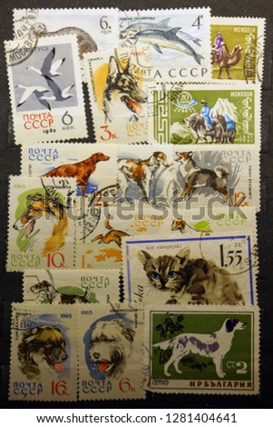 animal postage stamps                                #1281404641