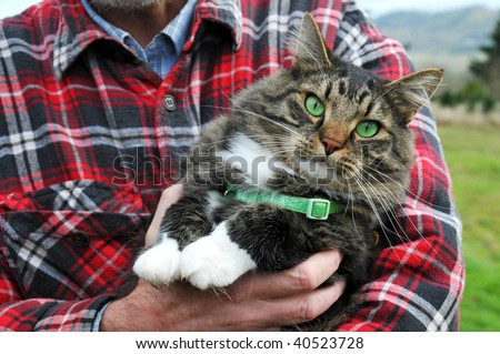 Animal Rescue Protection Man holding a maine coon cat with green eyes and collar
