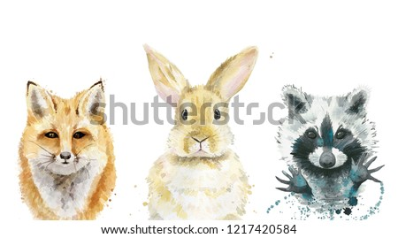 Animal set. Fox, rabbit and raccoon. Watercolour illustration on white.