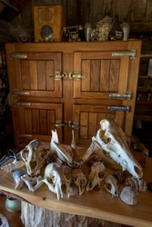 Animal skulls decoration in rustic wooden warehouse in the mountains.