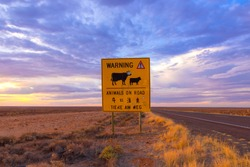 animal warning road sign - Outback Australia