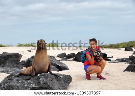 Animal wildlife nature photographer tourist on Galapagos looking at Galapagos Sea Lion taking photos on Galapagos cruise ship adventure travel holidays vacation, Espanola Island, Ecuador South America