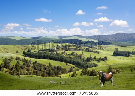 Animals grazing on the picturesque landscape background