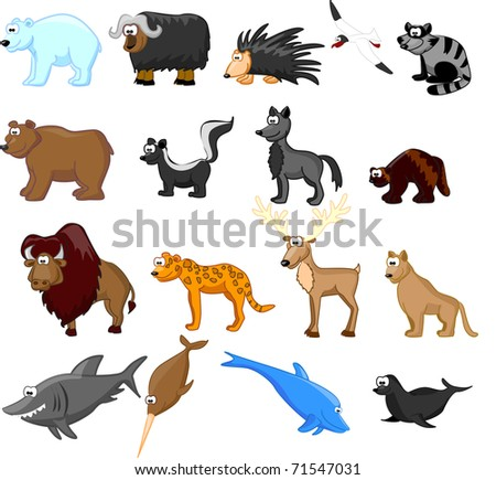 Animals of North America, including grizzly bears, caribou, polar bears, raccoons, bison, porcupine, mountain lion, coyote, skunk, wolverine, seals, jaguar, dolphin, shark, bowhead whale