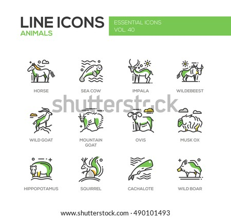 Animals - set of modern line design icons and pictograms. Horse, sea cow, impala, wildebeest, wild, mountain goat, ovis, musk ox, hippopotamus, squirrel, cachalote boar
