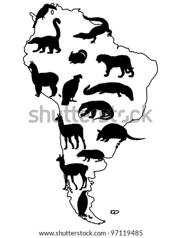 Animals South America - stock photo