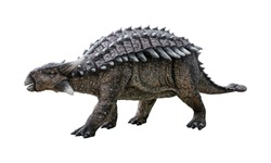Ankylosaurus is a herbivore genus of armored dinosaur, the dinosaur from the very end of the Cretaceous period, isolated on white background with clipping path