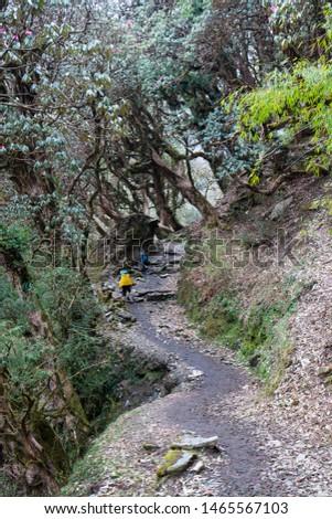Annapurna Base Camp Trekking the spectacular trekking trails in Nepal #1465567103