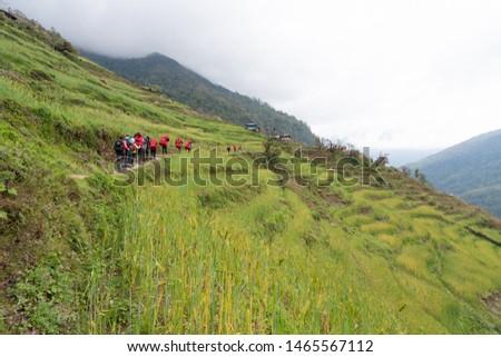 Annapurna Base Camp Trekking the spectacular trekking trails in Nepal #1465567112