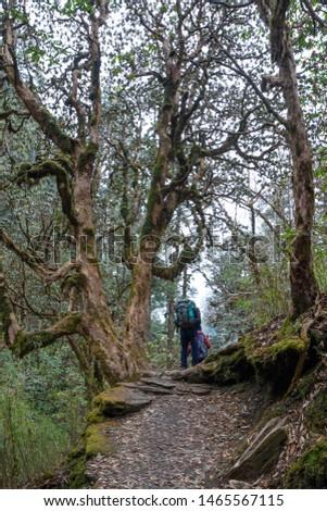 Annapurna Base Camp Trekking the spectacular trekking trails in Nepal #1465567115