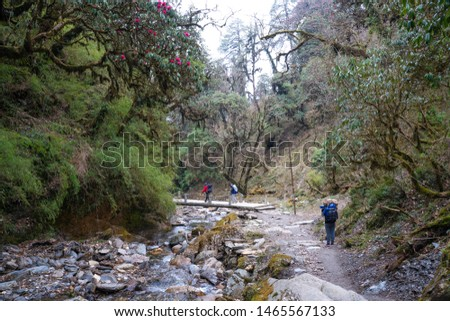 Annapurna Base Camp Trekking the spectacular trekking trails in Nepal #1465567133