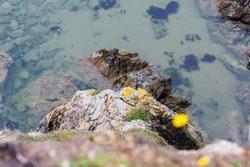 Annestown beach, County Waterford, Ireland - August 16, 2010: dangerous cliff at Annestown beach.