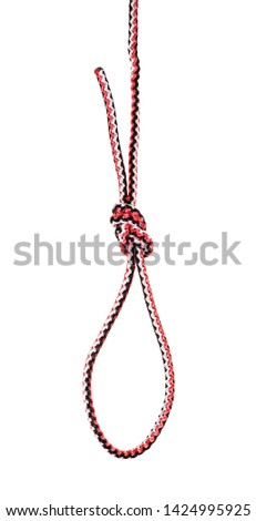 another side of Flemish loop knot tied on synthetic rope cut out on white background