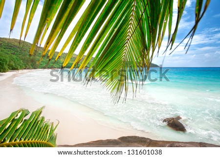 Anse Lazio beach on Praslin island in Seychelles,  Excellent seascape view with big stones and palmtree