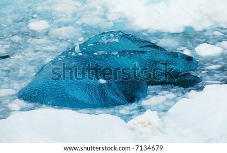 Antarctic blue glass ice