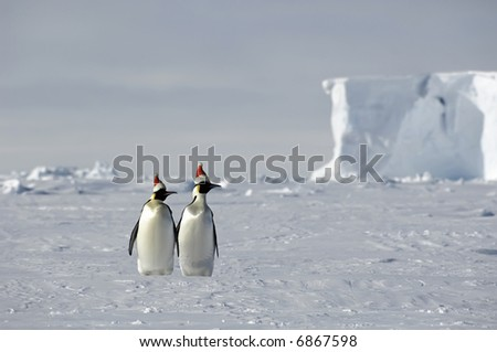 Antarctic Christmas