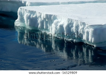Antarctic ice floe with reflection