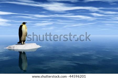 Antarctic penguin on ice