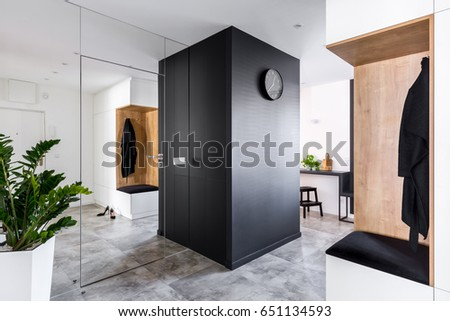 Anteroom with modern mirrored wall and big decorative plant #651134593