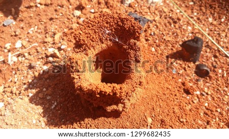 anthil tingling top view  ground ant house #1299682435