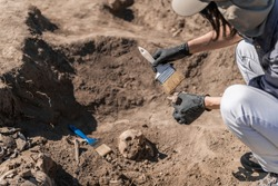 Anthropology Field Work. Anthropologists holding ancient human bones at ancient burial site.