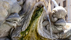 Antique baroque marble fountain with monster heads in Rome near Pantheon