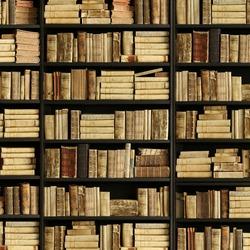 antique books on old wooden shelf.
